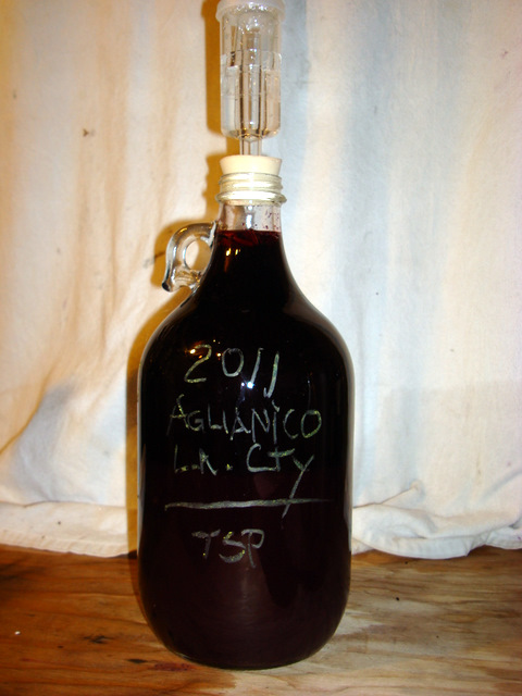Half a gallon of Aglianico.